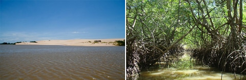 Delta of Parnaíba