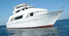 chartering_choices