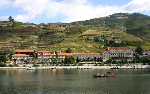 Enotourism in Portugal