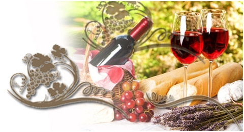Wine & Food Tours in Italy