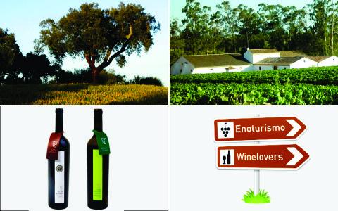 São Mamede Wine Tour