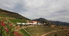 Quinta Nova de Nossa Senhora do Carmo & Quinta do Panascal